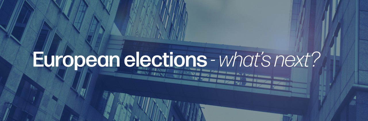 European elections - What's next?